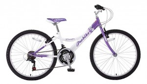 Click to view Probike Melody 24