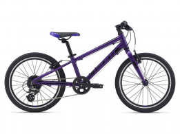 Click to view Giant Arx 20 Purple